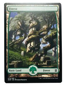 MTG. Zendikar Rising. ZNR. 279. Forest.