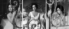 Elizabeth Taylor  Moments In Time  (3) Rare from Negative Original Photos  et063