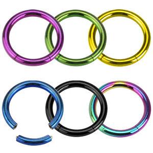 PAIR Titanium Anodized Surgical Steel Segment Rings 16g,14g,12g,10g,8g,6g,4g,2g