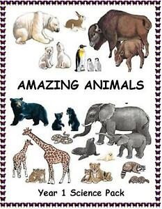 AMAZING ANIMALS - Key Stage 1 Science Teaching Pack