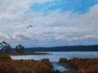 Sun Farm Wetlands Realism Landscape OIL PAINTING ART IMPRESSIONIST Original