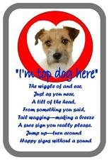 Jack Russell  Dog  Design Metal Door Sign
