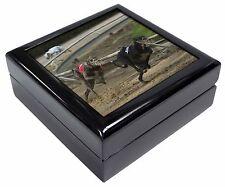 Greyhound Dog Racing Keepsake/Jewellery Box Christmas Gift, AD-GH1JB
