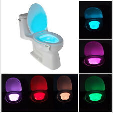 1Pc LED Bathroom Toilet Nightlight Battery Motion Activated Light Sensitive Lamp