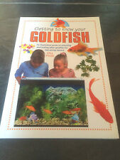 Gold Fish  book