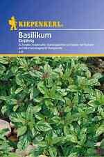Kiepenkerl - Basilic 547 feinblättrig, annuel basilikumsamen