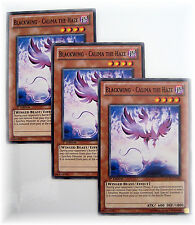 3 x BLACKWING - CALIMA THE HAZE STOR-EN009 yugioh common card set NM