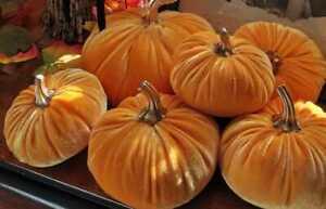 Halloween Pumpkin Decoration Fabric Orange Crush Velvet Plain Velvet (152cm wide