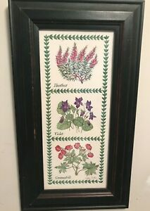 Herbs Botanical Signed Print by Fiona Butler Cranesbill Violet Heather Green Dis