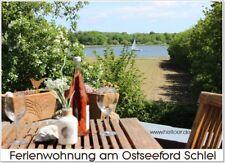 Ferienhaus Ostsee Schlei Ferienwohnung mit Meerblick Hund Schleswig-Holstein