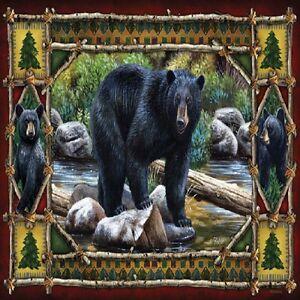 BLACK BEAR RUSTIC CABIN #1 IMAGE FABRIC/RUBBER BACK COASTERS  U PICK SET SIZE