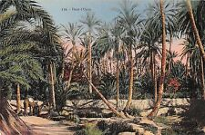 BF8531 dans l oasis types africa     Africa