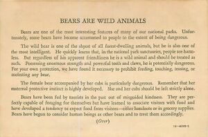 NATIONAL PARK SERVICE - Bears Are Wild Animals c.1940 INFO CARD (not a postcard)