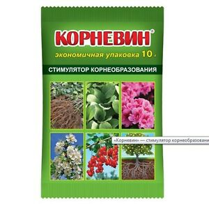Growth of root system, butyric acid, 10 gr on 10 liters Russia Корневин planting
