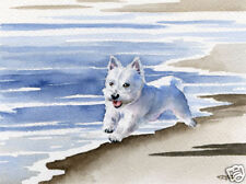 WEST HIGHLAND TERRIER DOG Painting 11 x 14 Art Print by Artist DJR
