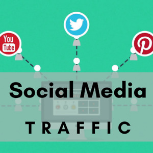 Genuine Real Social TRAFFIC for your website or page. Boost your webtraffic !!