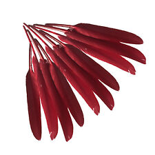 50 x Wine Red Natural Goose Feather 4-6inch/10-15cm For Hat Party Wedding Crafts