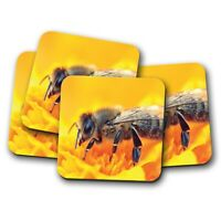 4 Set - Honey Bee Bumble Coaster - Pollination Nectar Flower Insect Gift #16850