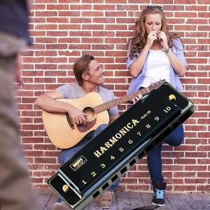 10-loch Blues Mundharmonika Musikinstrument Lernspielzeug Mit Box D4F3