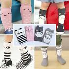 Baby Toddler Girl Boy Leggings Warmer Cute Animal Long Socks Arm Leg Warmers