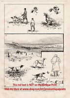 Dogs Hunting Field Trials English Setters & Pointers Large 1890s Antique Print 1