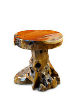Root Wood Table 45cm Wood Side Table Tree Trunk Wooden Table Coffee Table Rustic