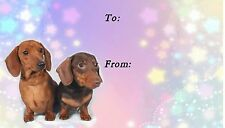 Dachshund Smooth Dog Self Adhesive Gift Labels by Starprint