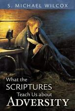What the Scriptures Teach Us About Adversity
