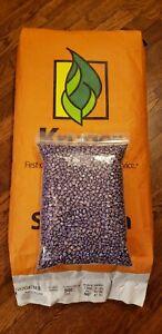 Round Up Ready Seed Corn / Food Plot Seed /Deer/Turkey / Clover / 5 lb Bag