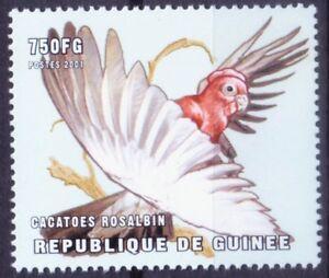 Guinea 2001 MNH, Birds, Galah, Eolophus roseicapilla, Parrot