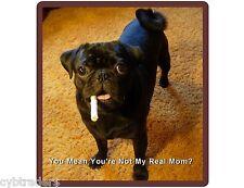 Funny Black Pug Dog Real Mom? Refrigerator / Tool Box Magnet Gift Card Insert