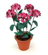 Dolls House FLOWER KIT 'Red Hydrangea' miniature GARDEN  12th FREE UK P& P