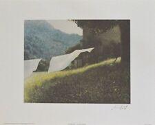 Lutz Münzfeld Sommerbach Poster Kunstdruck Bild 80x60cm