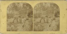 Forêt de Fontainebleau Photo Stereo Stereoview Vintage Albumine c1860