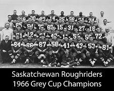 Saskatchewan Roughriders - 1966 Grey Cup Champions, 8x10 B&W Team Photo