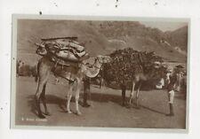 Aden Camels Vintage RP Postcard 912a