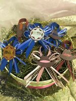 Charmed Wild Wild West CowBoy Corsage Pin Baby Shower Favors for Boy/Girl; 12