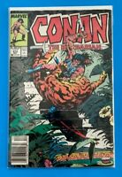 CONAN THE BARBARIAN VOL.1 #213 MARVEL COMICS 1988 VF/NM (1970-1994) NEWSSTAND