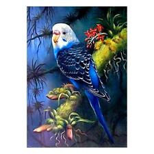 Beautiful Bird DIY 5D Diamond Painting Kit Embroidery Kit for Kids Children