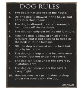 DOG RULES Wood Sign by Collins 7.5 x 9.5 Perfect Dog Lover Gift