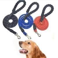 Dog Leash 5 FT Service Lead Training Padded Handle Reflective Nylon Puppy Rope