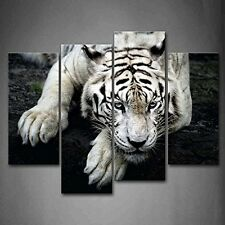 Black And White White Tiger Lie On Rock Wall Art Painting Pictures Print On The