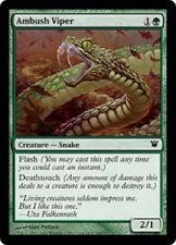 Ambush Viper x4 (EX) - Innistrad - MTG Green Common