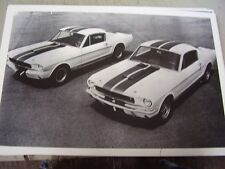 1965 SHELBY MUSTANG GT350 FASTBACK  PAIR OF'EM  12 X 18 LARGE PICTURE   PHOTO