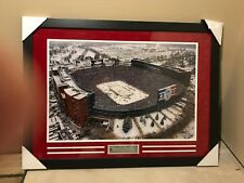 Red Wings Big House Winter Classic Picture Framed (New)
