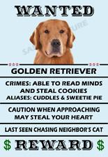 Golden Retriever Dog Wanted Poster Flex Fridge Magnet 2.75 X 4 See Video