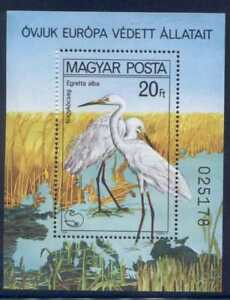 Hungary 2665 MNH Birds, Great White Heron