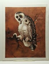 Richard Hinger Snowy Owls Birds Lithograph Art Print