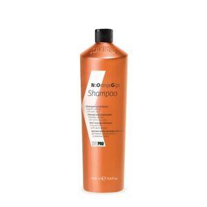 KayPro NoOrangeGigs Anti-Orange Shampoo 1L