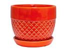Planter Pot Plant Coral Ceramic Acorn 6 Inch Indoor Outdoor Garden New Trendspot